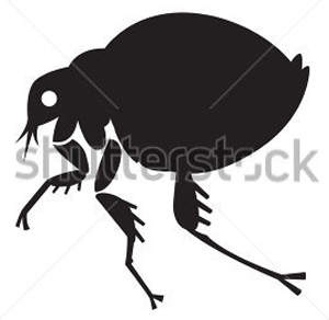 Flea icon on the Enviropest site