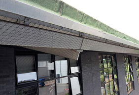 An image of a property roof fitted with bird-proofing measures