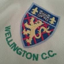 Image of the Wellington CC crest on a playing white shirt